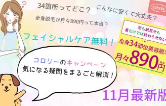 コロリーキャンペーン11月最新版(890円キャンペーン&ファイシャルケア無料の説明)