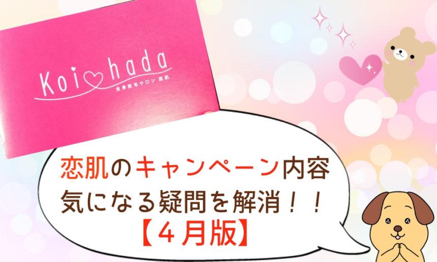4月版【恋肌キャンペーン&最安割引】※限定大幅値下げ予約中!