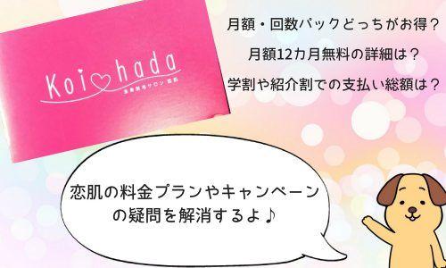 恋肌キャンペーン解説