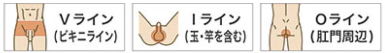 レイロール陰部脱毛(VIO)