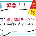 ミュゼ『通い放題100円キャンペーン』年内終了!2018年内がラストチャンス!